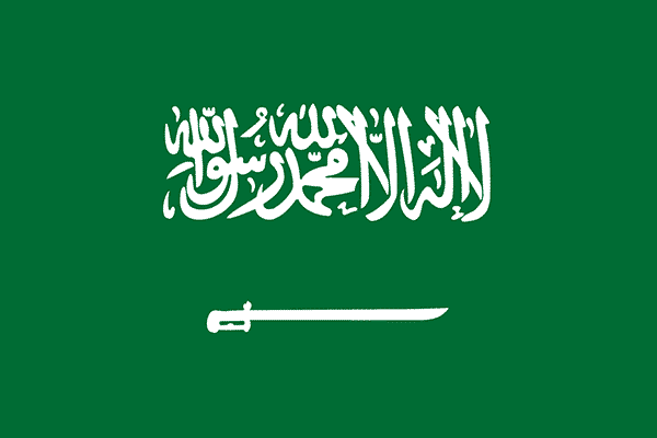 Arabia Saudí Mundial 2018 – Guía y Análisis